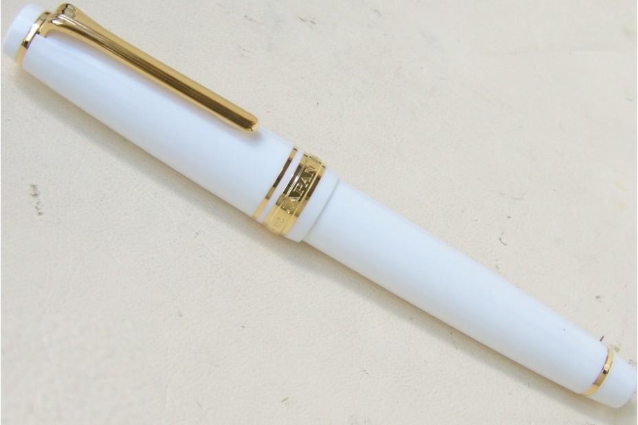 Sailor ProGear Slim (Sapporo) White Gold Trim Fountain Pen